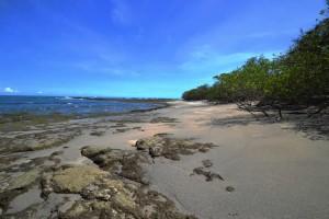 Playa Robalo